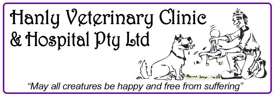 Hanly Vet OFFICIAL WEBSITE